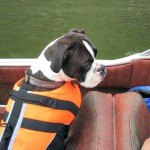 Last Boating Safety Class for 2012