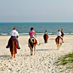 It's a Great Time for Horsing Around on the Gulf