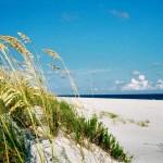 Walks on the Wild Side Explore the Alabama Gulf Coast