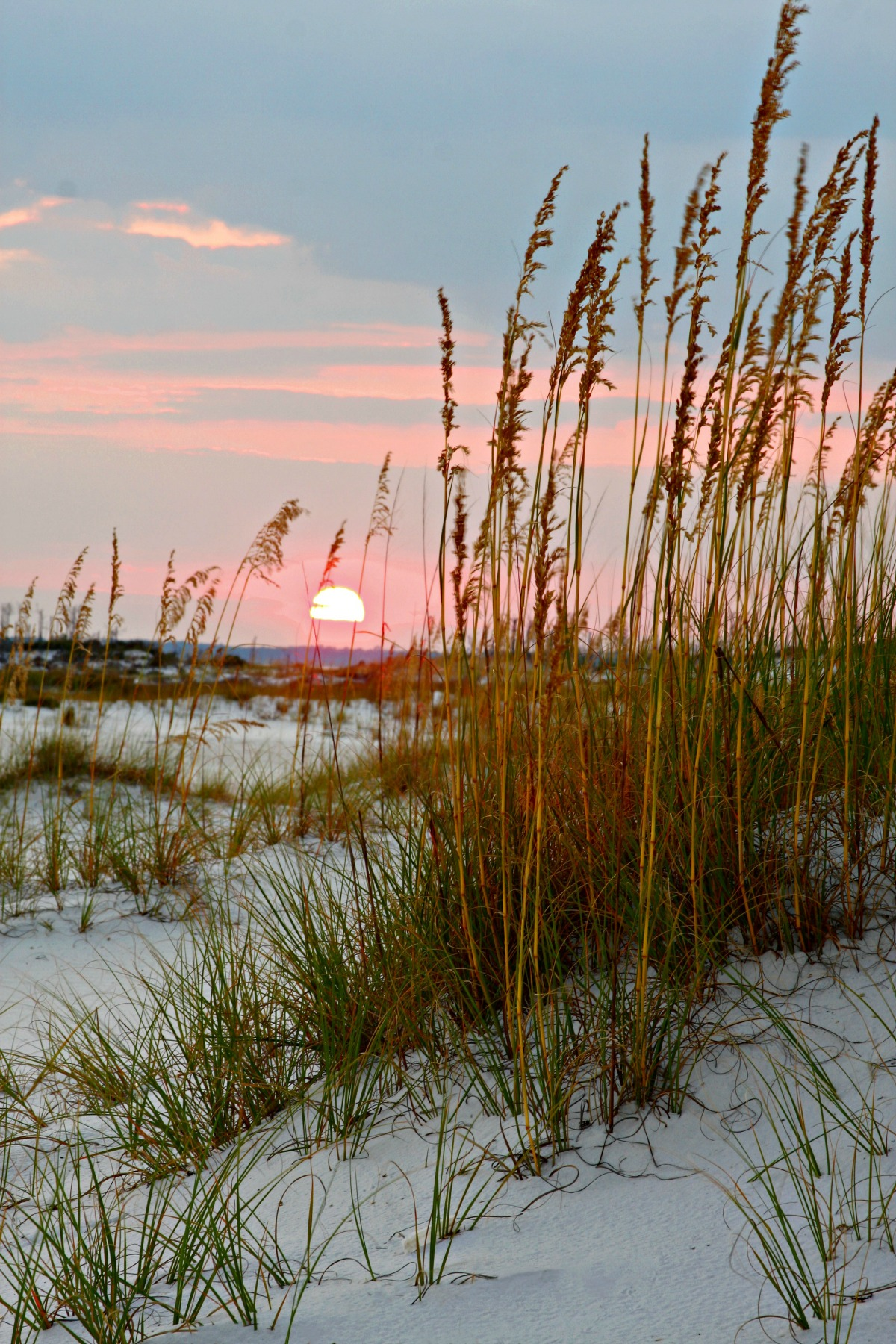 sunset over dunes and sea oats
