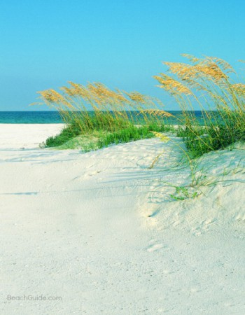 Sugar-white sand beach and sand dunes in Pensacola Beach, Florida