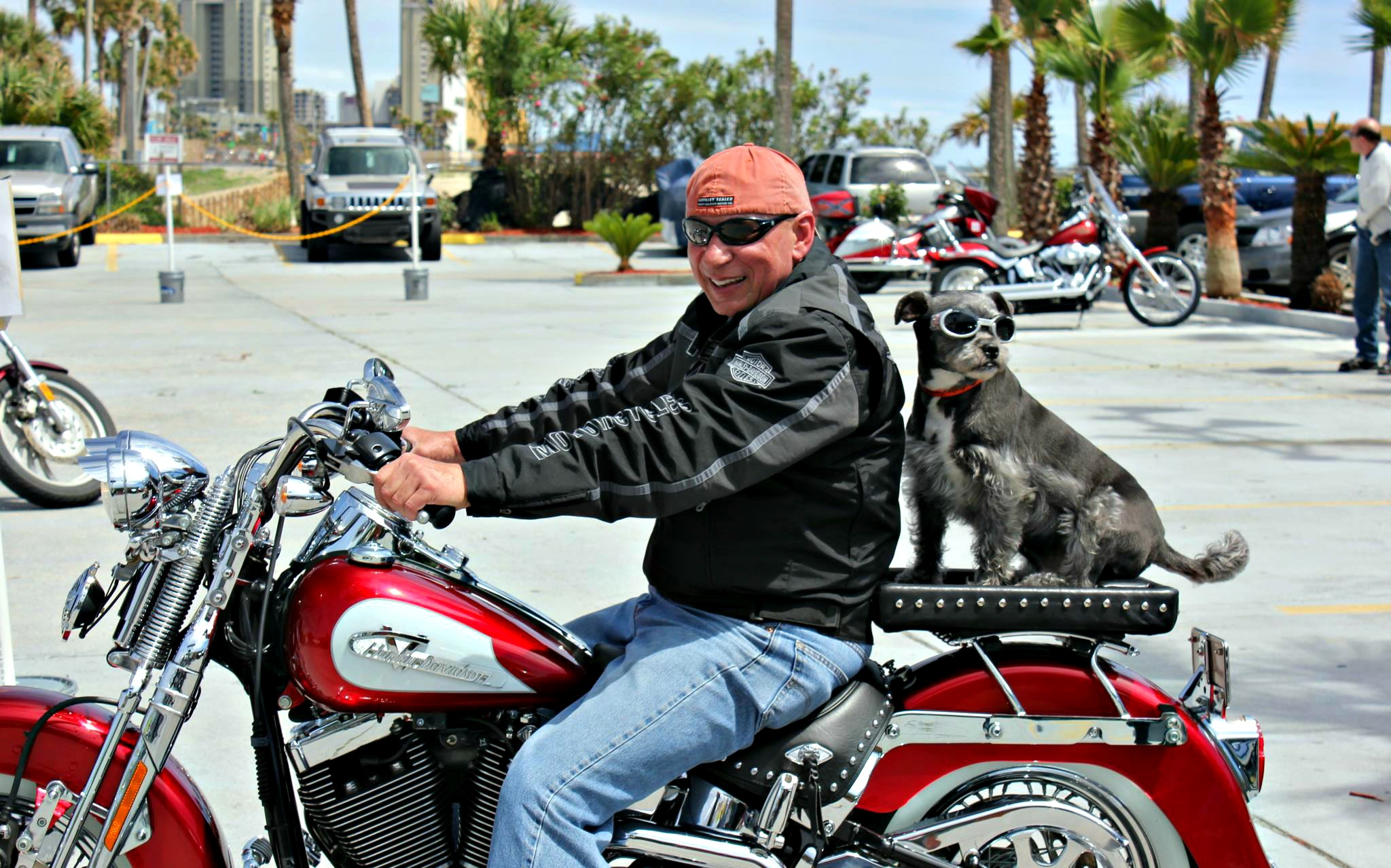 Thunder Beach motorcycle rally biker with his dog riding behind at The Chateau in Panama City Beach