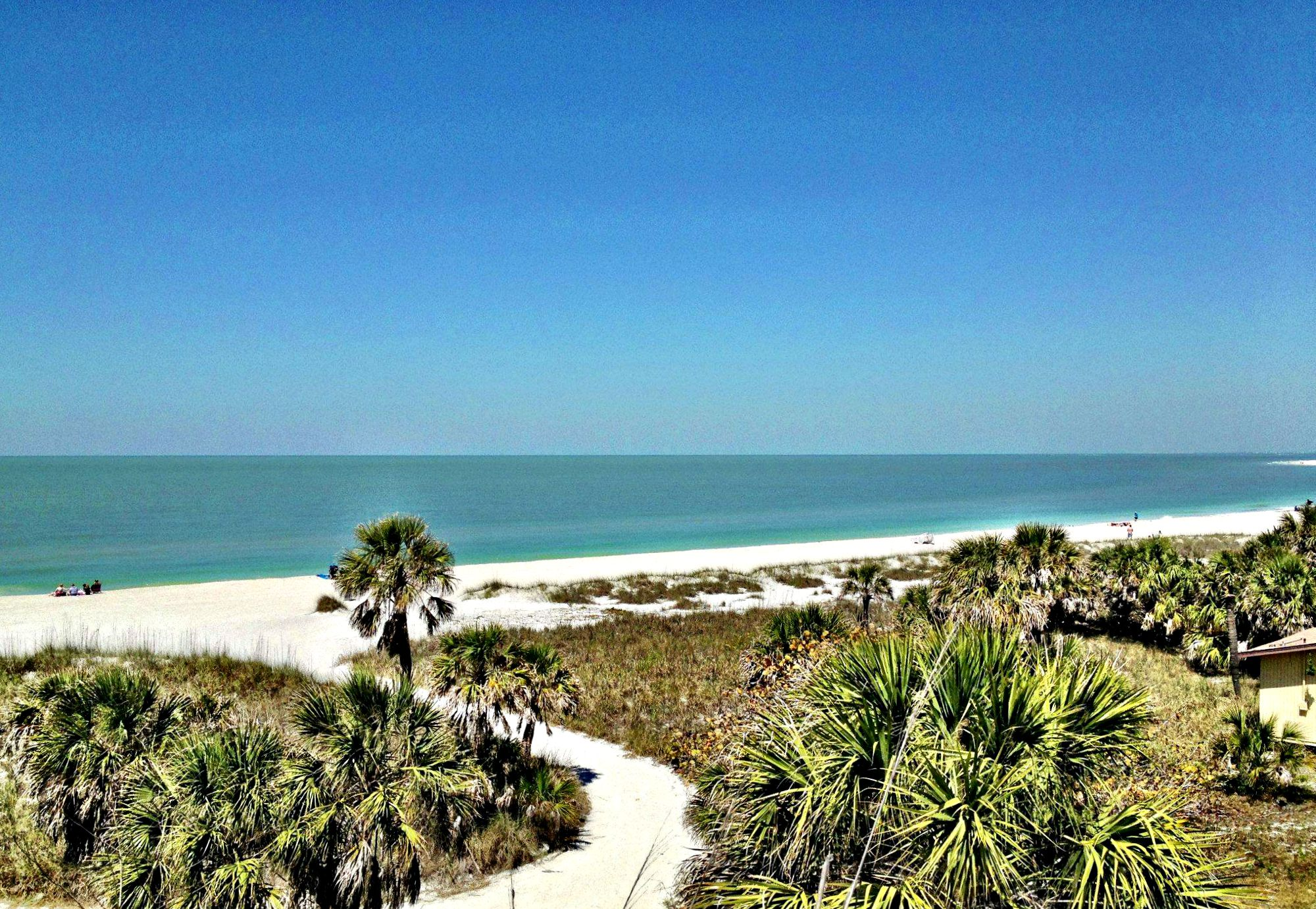 Gulf beach with white sand and palm trees at Fort De Soto State Park near Clearwater, Florida