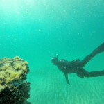 Discover Underwater Wonders at Navarre Beach Diving Reefs