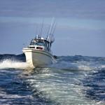 Gulf Coast Fishing in Northwest Florida and Alabama – A Year-Round Affair
