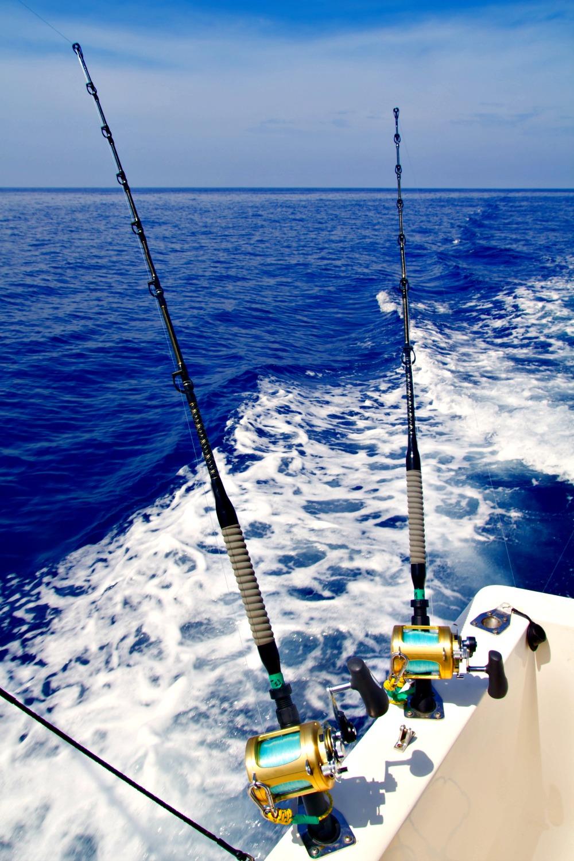 Gulf Coast Fishing In Northwest Florida And Alabama