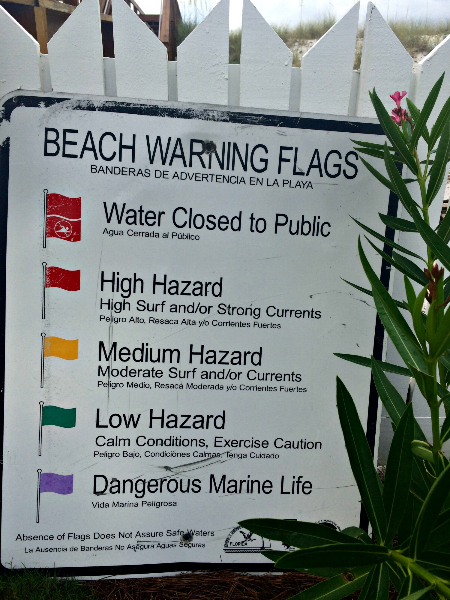 Sign showing meanings of the beach warning flags