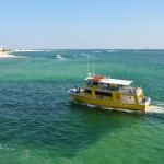 Thrilling Yet Relaxing, a Destin Dolphin Cruise Delivers on Family Fun!