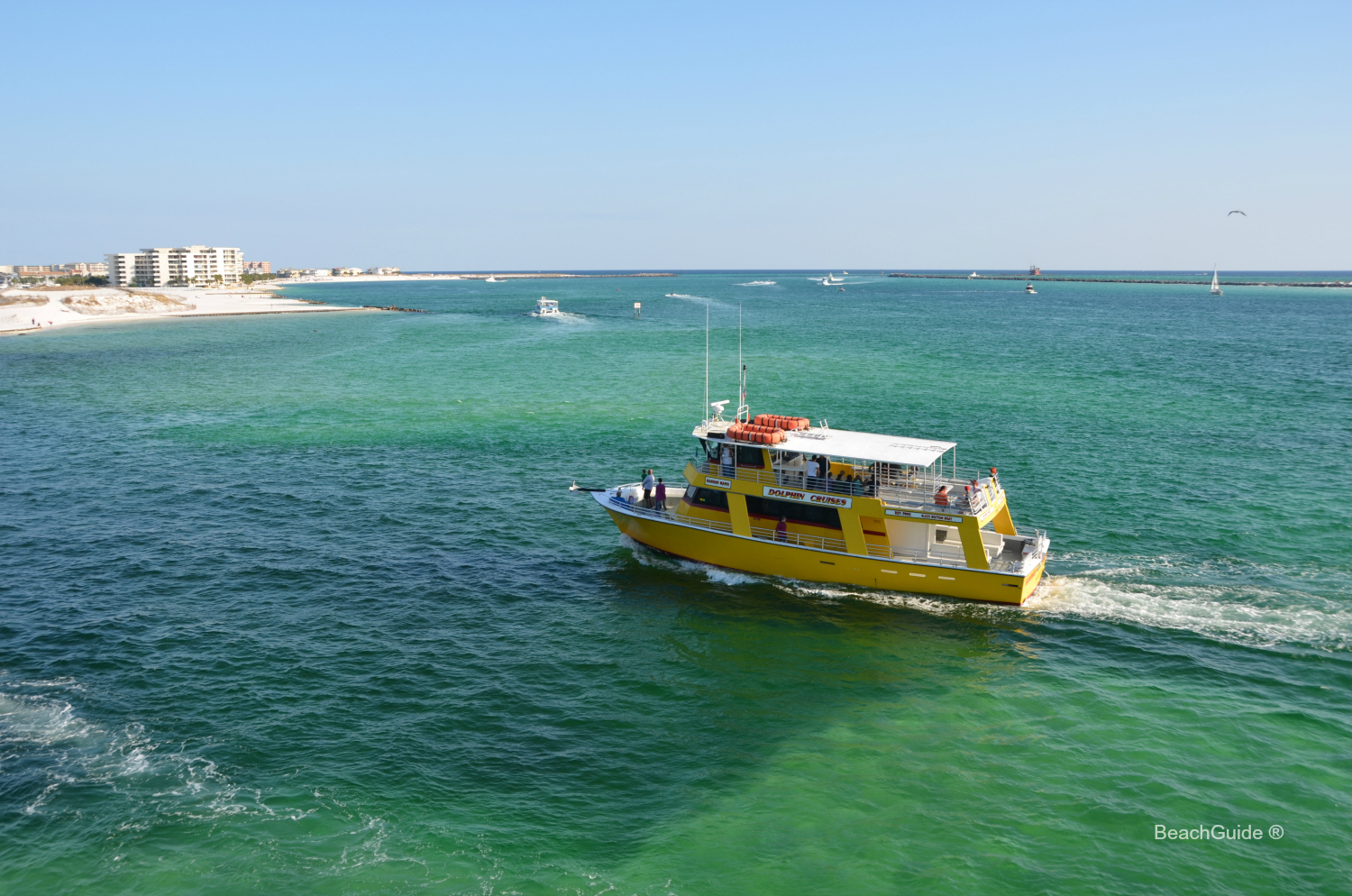 Boats of all sizes leave the Destin Harbor year round for dolphin tours in the Gulf, harbor and bay.