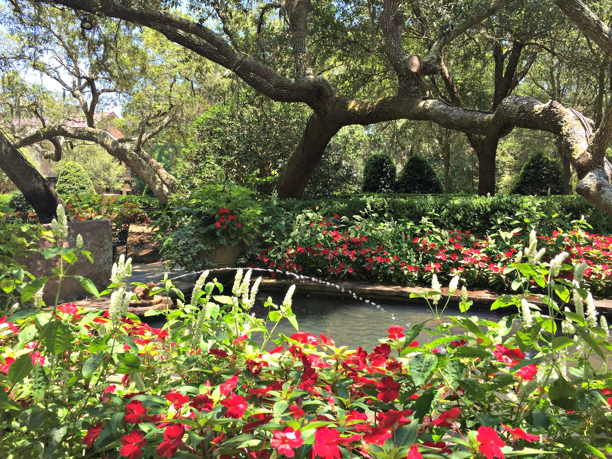 Blooming red plantings and frog fountain at Bellingrath Gardens and Home