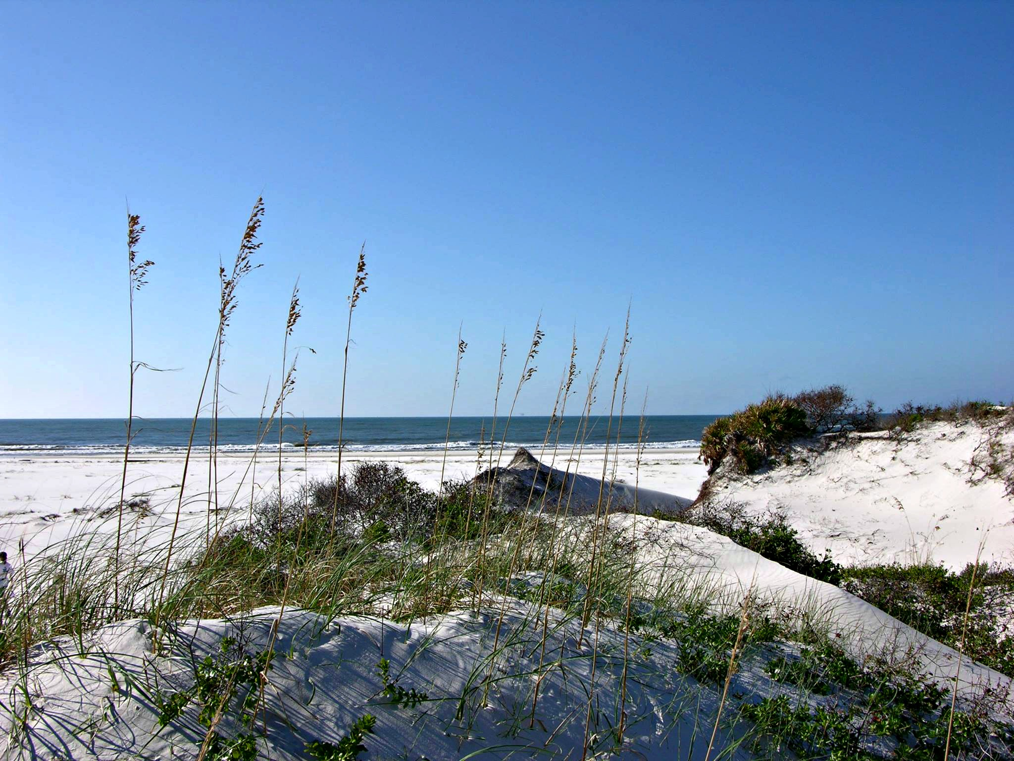 Sea oats and sand dunes at Bon Secour National Wildlife Refuge, one of ten easy day trips from Gulf Shores, AL