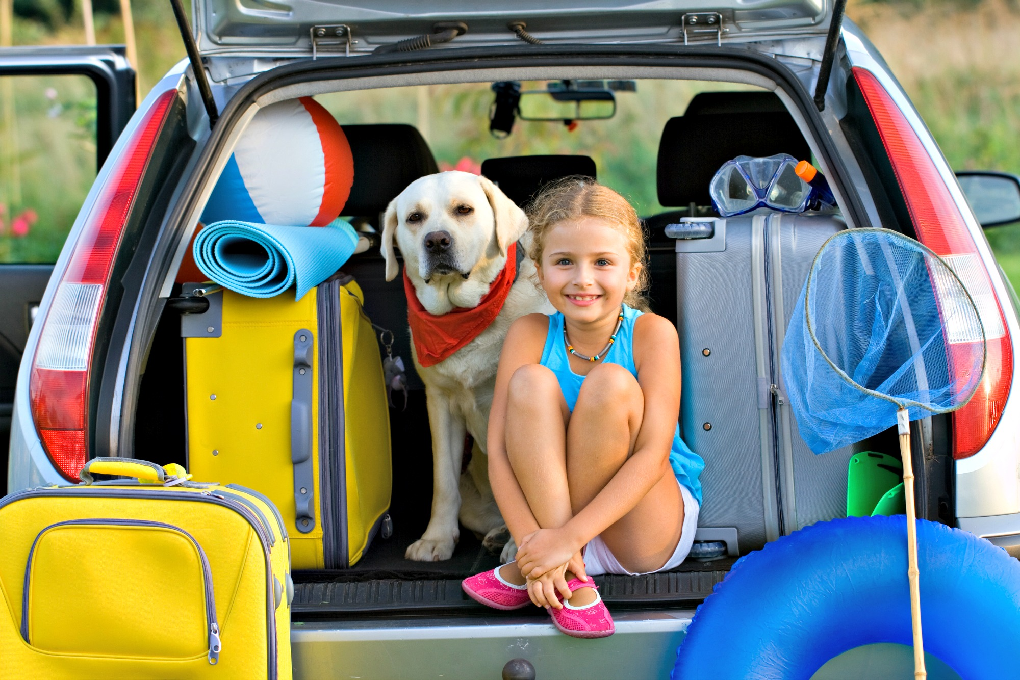 Ready to travel with the famiy dog to the beach