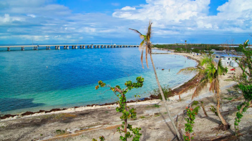 With 500 acres to explore, Bahia Honda State Park's secluded beaches are ideal for shelling, snorkelying and just relaxing.