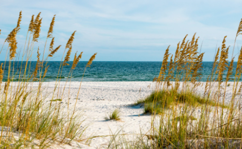 Some of the best secluded beaches in northwest Florida make Navarre a favorite destination for outdoor enthusiasts.